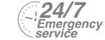 24/7 Emergency Service Pest Control in Islington, Barnsbury, Canonbury, N1. Call Now! 020 8166 9746